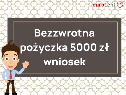 Pomoc antykryzysowa dla samozatrudnionych: bezzwrotna pożyczka 5000 zł wniosek i zasady udzielania.