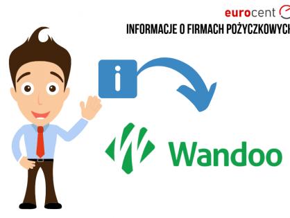 Wandoo oferta -  najważniejsze informacje na temat pożyczkodawcy